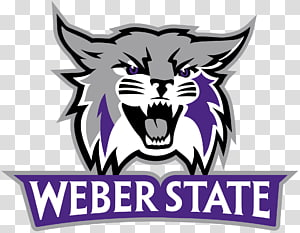 Weber State Wildcats football Weber State University Weber State Wildcats men\'s basketball Weber State Wildcats women\'s basketball Arkansas Razorbacks football, beehive PNG