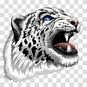 Tiger Snow leopard African leopard Roar, leopard PNG