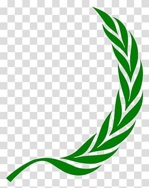 Laurel wreath Bay Laurel , others PNG clipart