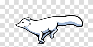 Arctic fox Drawing Animation, arctic fox PNG