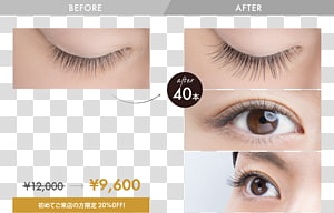 Eyelash extensions Eye Shadow Artificial hair integrations プロケアアイラッシュ, hair PNG clipart