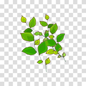 Green Leaf Plant Computer file, Green leaves PNG clipart