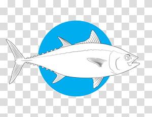 Shark Bony fishes Marine biology Salt Water Sportsman, tuna PNG clipart