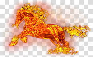 flamed horse , Horse Flame Fire, Fire Horse PNG
