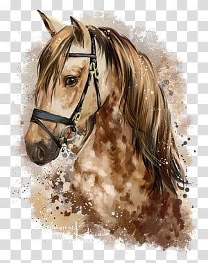closeup of brown and beige horse head painting, Horse Pony Watercolor painting Drawing, horse PNG
