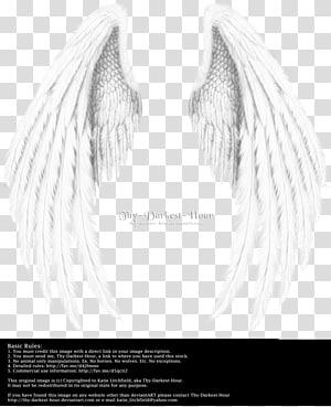 Thy Darkest Hour wings art, Angel wing Angel wing, wing,Angel wings,Real PNG