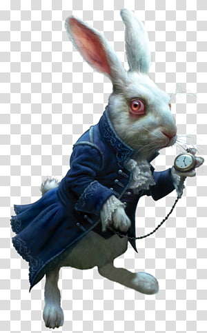 rabbit wearing coat and holding pocket watch, Alices Adventures in Wonderland The Mad Hatter Through the looking glass. Cheshire Cat, Western Magic Dark embellishment,rabbit PNG clipart