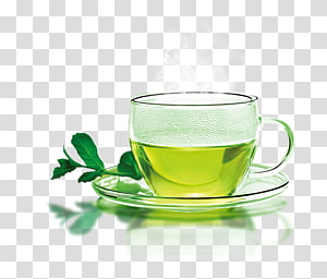 green tea on glass cup, Green tea Coffee Longjing tea Teacup, A cup of hot green tea PNG