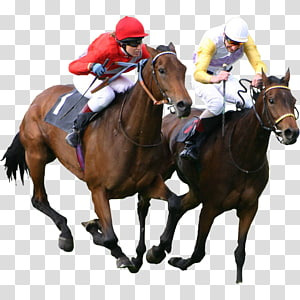man riding horse, Thoroughbred The Kentucky Derby Epsom Derby Horse racing Equestrian, Bet PNG