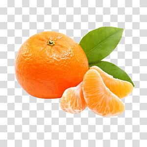 Orange juice Tangerine Mandarin orange Satsuma Mandarin, orange PNG clipart