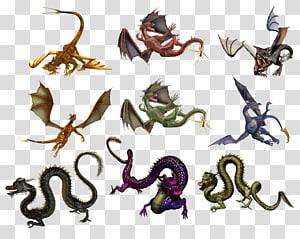 Dragon , dragon PNG