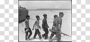 Prisoner of war Vietnam Viet Cong Barbed wire, Crepe Myrtle PNG clipart