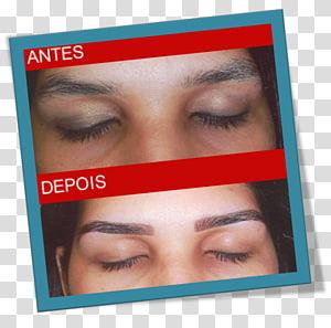 Eyelash extensions Hair coloring Artificial hair integrations, hair PNG clipart