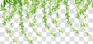 Poster, grass PNG