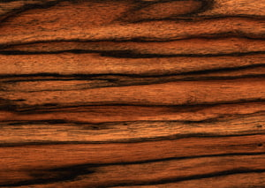 Wood Texture mapping Tree, Wood PNG