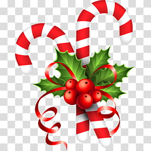 Candy cane Stick candy Santa Claus Christmas , santa claus PNG