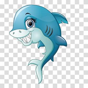 Shark Smile, Smiling shark PNG clipart