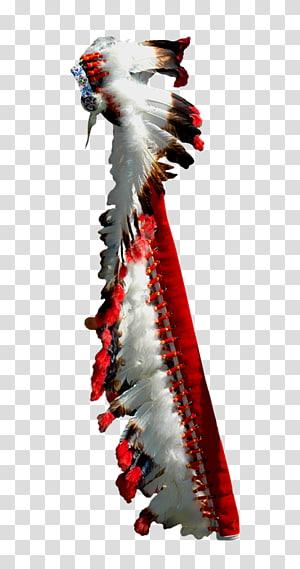 Beak, american PNG