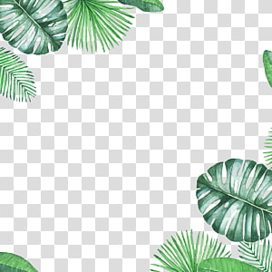 green fresh leaf border texture PNG
