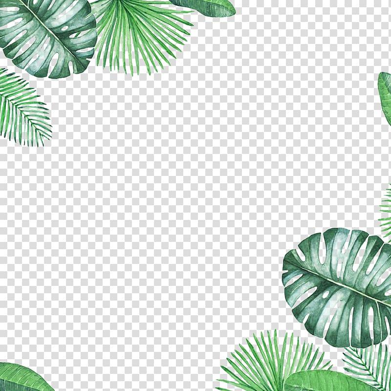 green fresh leaf border texture PNG