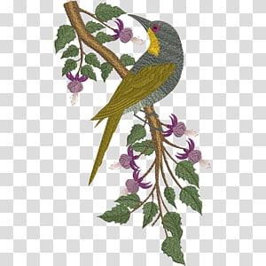 Parrot Bird Embroidery Beak, parrot PNG