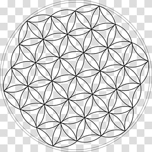 Overlapping circles grid Tree of life Symbol , symbol PNG