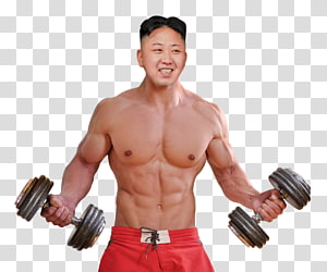 Dietary supplement Muscle Exercise Bodybuilding Lean body mass, bodybuilding PNG