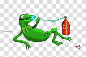 Tree frog Reptile, frog PNG clipart