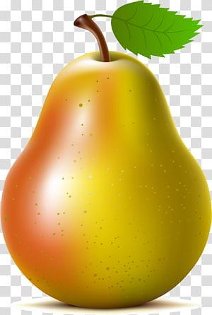 Asian pear Fruit , pear PNG