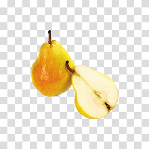 Pear Fruit , Two pears PNG clipart