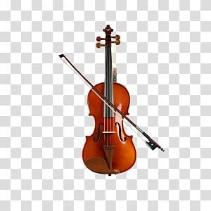 Musical instrument Violin Bowed string instrument Cello, kapok Zaomu beginner violin PNG