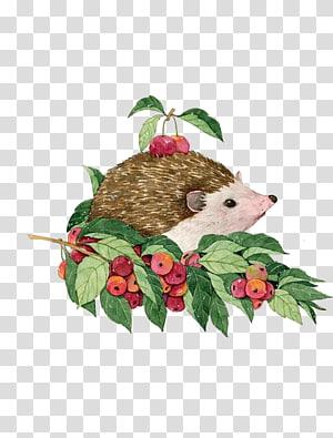 Hedgehog Watercolor painting Illustration, Hedgehog fruit harvest PNG clipart