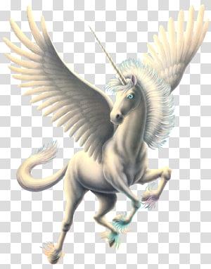 white unicorn illustration, Pegasus Computer file, Pegasus PNG