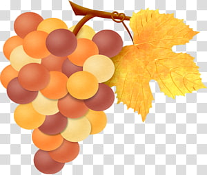 Grape leaves Fruit, painted grapes PNG clipart