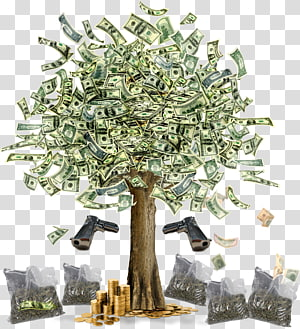 Money Finance Tree Bank Currency, tree PNG clipart