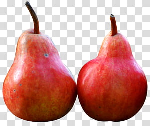 Pear Fruit, Pear PNG clipart