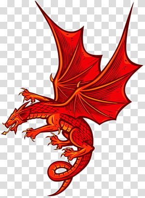 graphics Welsh Dragon, dragon PNG