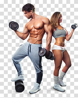 Exercise Fitness Centre Personal trainer Physical fitness General fitness training, dumbbell PNG