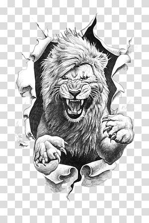 gray lion illustration, Lion Drawing, roar PNG