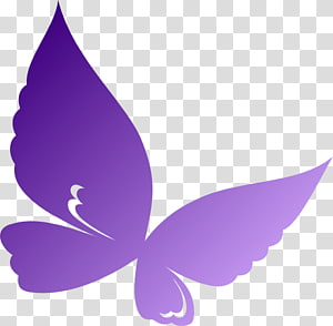Butterfly Violet , purple butterfly PNG