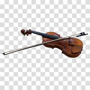 Violin Musical instrument Viola, violin PNG