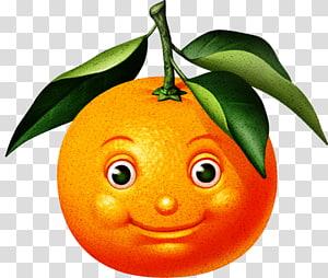 Orange juice Orange S.A. Juste un Lascar Apoca, orange PNG clipart