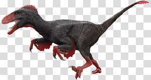 Velociraptor Utahraptor ARK: Survival Evolved Allosaurus Moab Giants, kids theater PNG