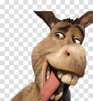 Donkey Shrek Film Series YouTube, donkey PNG