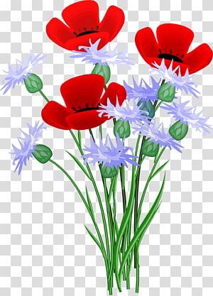Flower Open Red GIF, flower PNG clipart