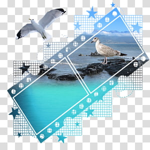 Film frame Screen Gems Filmstrip, mask filtre PNG clipart