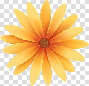 Flower, flower PNG clipart