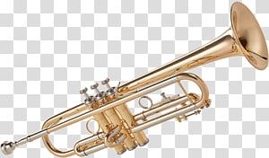 Trumpet Musical Instruments Wind instrument Brass Instruments, Trumpet PNG