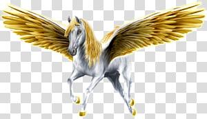 Pegasus Medusa Horse Perseus Greek mythology, pegasus PNG