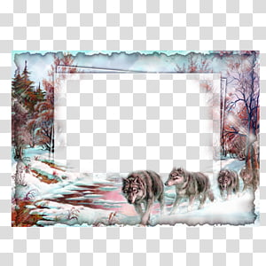 fox pack in forest painting, frame Collage Film frame, Snow Wolf Frame PNG